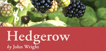 Cover van Hedgerow