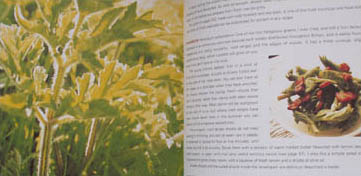 The River Cottage Cook Book boek