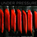 Under Pressure, Cooking Sous Vide